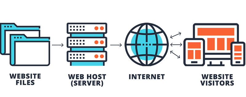 Web Hosting 101 – Everything You Need To Know About Web Hosting